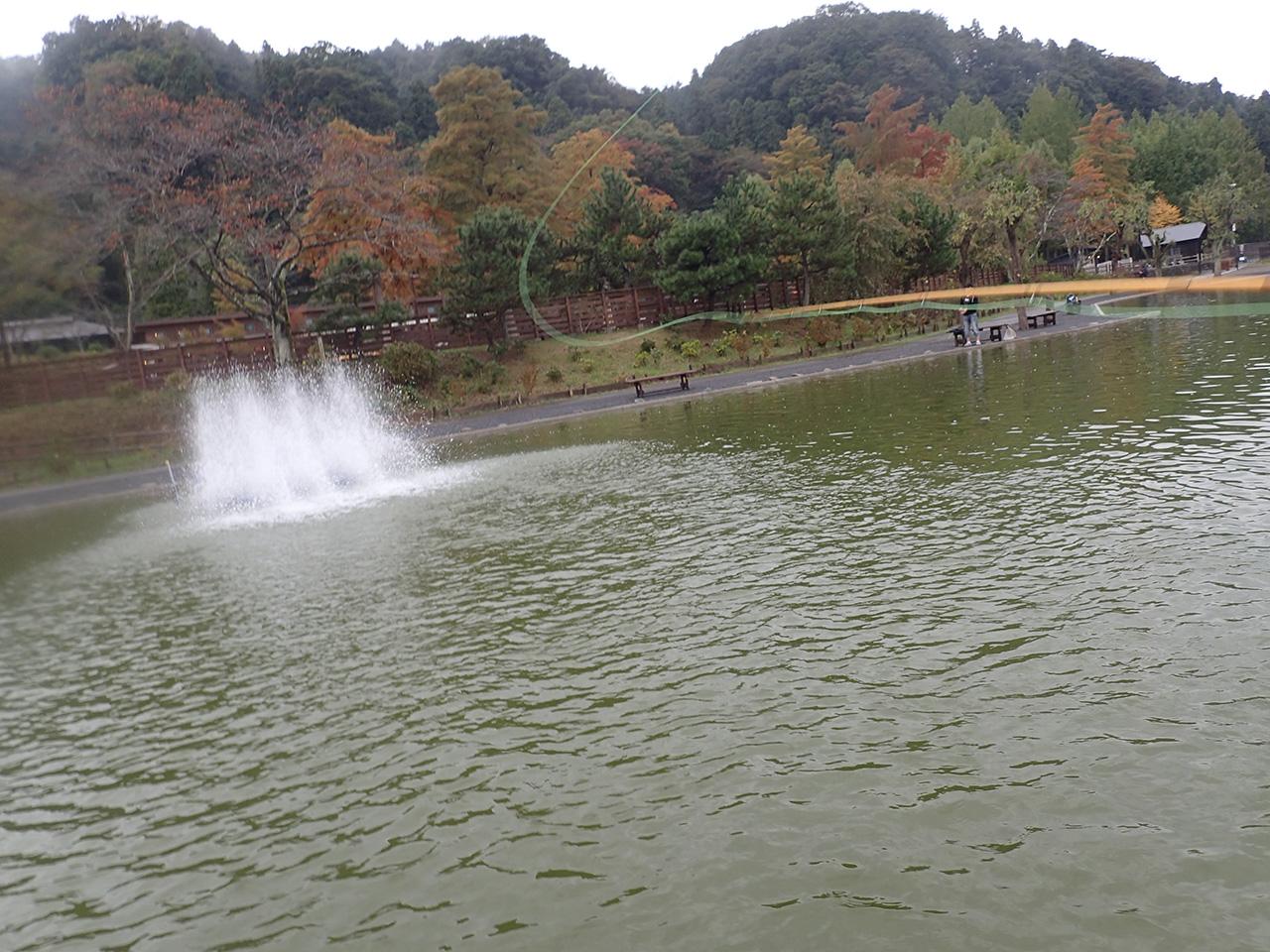 FISH UP 秋川湖 水車